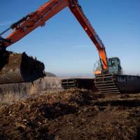 swamp-excavator